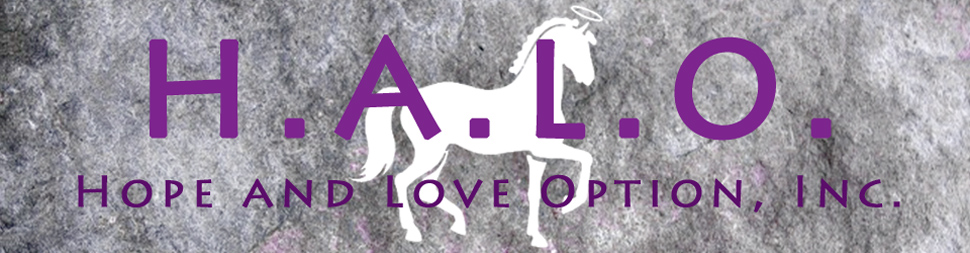 H.A.L.O. Hope and Love Option